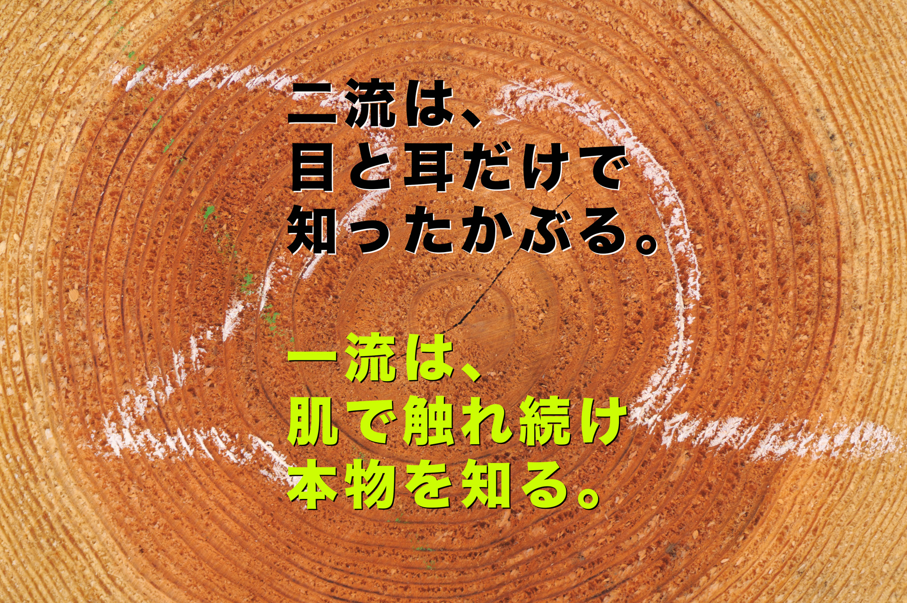 『杉の床』考(その2)